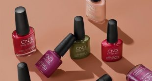 The new SHELLAC fall collection has arrived at TREASURED MOMENTS